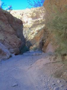 ATV Rental Box Canyon